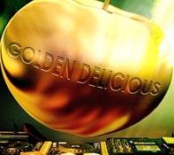 Gouden Disco Themafeest Texel